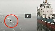 Este Video De 4 Minutos Ha Hecho LLORAR Al Mundo. No Todo Está Perdido… ...