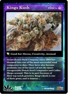 Cannabis News, Medical Cannabis, Cannabis Oil, Cannabis Edibles, Weed Card, Weed Strains, Buy Cannabis Online, Cbd Oil For Sale, Edibles Online