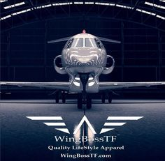 7d3f80f01 Where will the wings take you   PJ  WingBoss  Plane  Jet