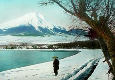 MT. FUJI, TREE, MAN AND SNOW -- Morning Light on the Winter Shores of Lake Yamanaka