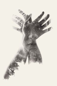 incorporate part of photo?? [Photographer Christoffer Relander |]