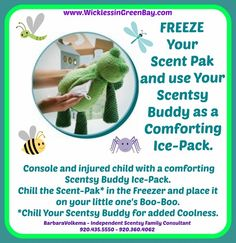 Console You Little One with a Scentsy Buddy Ice-Pack Baby Buddies - https://wicklessingreenbay.scentsy.us/Scentsy/Buy/Collection/967 Limited Edition Safari Buddies - https://wicklessingreenbay.scentsy.us/Scentsy/Buy/Collection/1043 Close-Out Buddies - https://wicklessingreenbay.scentsy.us/Scentsy/Buy/Collection/808