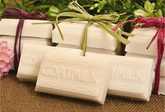 Goats Milk Tray Guest Sized Soap Mold - Cierra Candles
