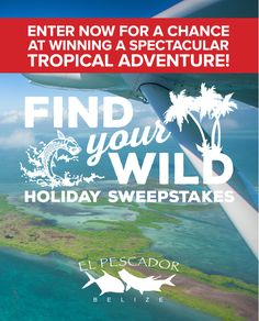 Enter now for a chance at winning a spectacular Tropical Adventure! Find Your Wild Holiday Sweepstakes