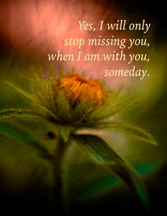 Yes, I will only stop missing ... Mommy loves you so Allie Rose!