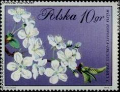 znaczki pocztowe z kwiatami