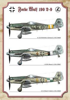 Fw-190D