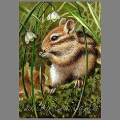 """""""Spring Chipmunk 2012"""". An ACEO (Art Cards, Editions and Originals) It was created using colored pencil and India ink. The dimensions are 2.5"""" by 3.5""""."""