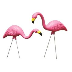 Pink Flamingos - promo box (2)