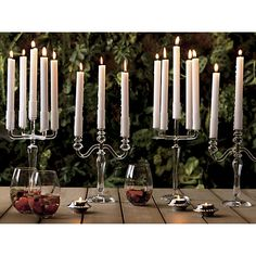 labra holds 5 candle holder in candle holders, candles | CB2