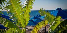 Apartments and studios in Faliraki, Rhodes   Epsilon Hotel in Rhodes, Faliraki Beach