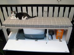 If you are looking for a way to hid the litter box a bit.you should sit back and enjoy today's collection of Purrfect Litter Box Cover DIY Projects! Cat Litter Box Enclosure, Diy Litter Box, Hidden Litter Boxes, Litter Box Covers, Hiding Cat Litter Box, Cat Room, Cat Furniture, Diy Stuffed Animals, Crazy Cats