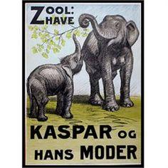 Zoo plakat - Elefanten Kaspar & hans moder Str. 60 x 84 cm