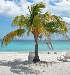 Cas Abou, Curacao. I've been here. It was paradise