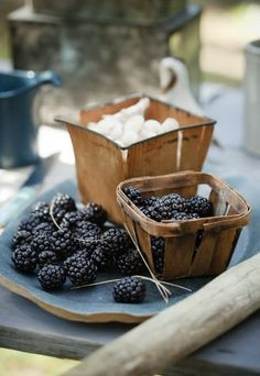 fresh off the farm, one of my loves of summer is picking from all the wild black berry bushes.