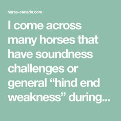 "I come across many horses that have soundness challenges or general ""hind end weakness"" during horsemanship lessons and training. The majority of these horses are in the prime years of their life. At 10-15 years old, they still have many..."