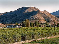 Viva Torrevieja!: nu skall den spanska våren snart komma farande.......