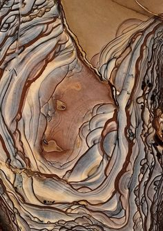 Ideas for tree bark texture forests Crystals Minerals, Rocks And Minerals, Patterns In Nature, Textures Patterns, Print Patterns, Motifs Organiques, Caillou Roche, Art Grunge, Tree Bark