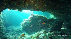 San Vito Lo Capo, una spiaggia stupenda, ma anche un posto perfetto per le immersioni | WePlaya