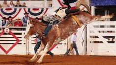 Rare back and bareback during the Fort Worth Stock Show and Rodeo!
