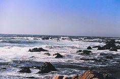 Ocean View #motherofnecessity