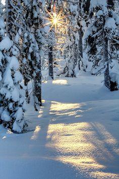 cornersoftheworld: Lapland | by Pawel A K