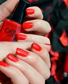 Avon Nail Paint,Nail Paint, discount Avon products,lipstick, facewash, Buy Avon Nail Paint,Nail Paint, discount Avon products,lipstick, facewash For Beauty Products, Avo - iStYle99.com