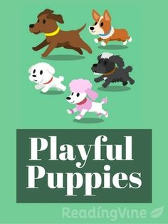 Playful Puppies - This passage includes 40 Dolch Pre-primer vocabulary words. Students will read the passage and answer comprehension questions.