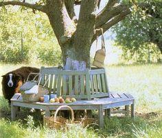 tree bench  ;)