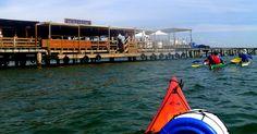 PARC DELTAVENTUR kayak DELTA EBRE ruta badia alfacs