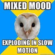 Bildresultat för bipolar owl meme