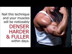 Muscle Building Workouts - The Muscle Maximizer