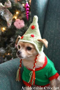 Crochet a Christmas Sweater, Hat, Collar or Scarf for Your Dog (or Cat!) – free patterns – Grandmother's Pattern Book