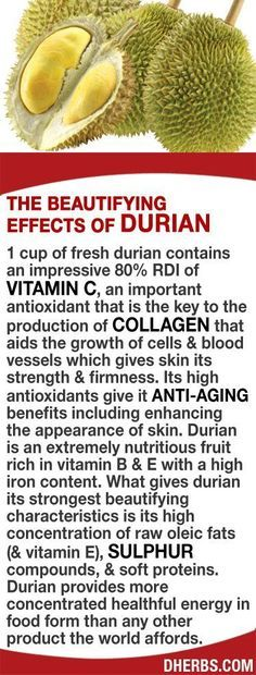1 cup of fresh durian contains 80% RDI of Vitamin C, an important antioxidant that's key in the production of collagen aiding the growth of cells & blood vessels giving skin its strength & firmness. Its high antioxidants give it anti-aging benefits. Durian is an extremely nutritious fruit rich in vitamin B & E with a high iron content. What gives durian its strongest beautifying characteristics is its high concentration of raw oleic fats (& vitamin E), sulphur compounds, & soft proteins…