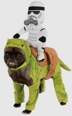 Dewback Pet Rider Costume        Deal of the day    http://amzn.to/2bfDSv4