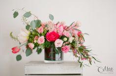 Celsia Floral, Sherri Koop