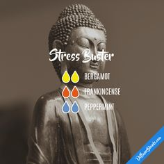 Stress Buster - Essential Oil Diffuser Blend