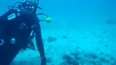 Ingenious Divers Crack An Egg Underwater, Prove Science Is Oh-So-Very Cool. Watch the entire video.