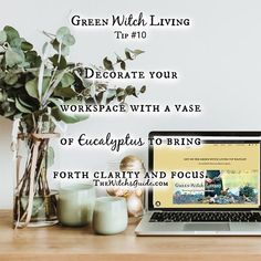 Green Witchcraft, Wiccan Witch, Magick, Pagan, Magic Herbs, Herbal Magic, Natural Carpet Cleaners, Witch Craft, Natural World