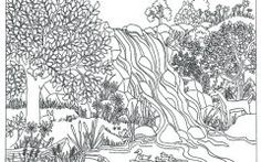 Latest Nature Colouring Pages For Adults
