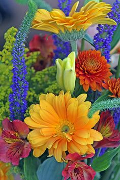 Flowers Thru My Eyes - Bouquet of Cut Flowers at Sarasota, Florida's Weekly Farmer's Market