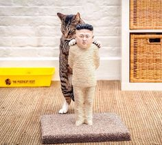 Putin and Jong-Un as a Cat Scratches