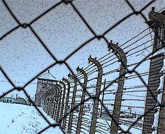 Antonio Lucignano: La cortina di ferro di Washington in Ucraina