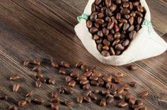 Настойка на кедровых орешках - рецепты. Как настоять кедровые орешки на водке, самогоне или спирту
