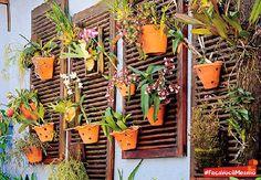 Afinal, quem não gosta de flores? Elas são símbolos de amor, pureza e delicadeza. Com suas cores, as flores trazem delicadeza e aroma para o ambiente, deixando-o muito mais agradável.  Veja que ideia simples e ao mesmo tempo bela para criar um jardim suspenso para área externa de sua casa. Janelas velhas de madeira e alguns vasinhos de barro para criar um jardim suspenso. Curtiu?! #Jardim #Flores #JardimSuspenso #Decoração
