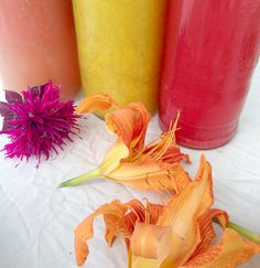 Summer Cocktails: Herbal Syrups, Bitters & Recipes
