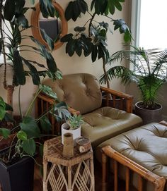 Plants make people happy. @_a_l_o_e_ _ . #urbanjunglebloggers #plantsmakepeoplehappy #houseplants #indoorplants #planthoarder #mod #midmod #mcm #midcentury #midcenturymodern #rattan #bohemian #bohemianstyle #bohemianhome