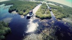 Airboat Flight over the Everglades. Does it get any better? #airboat #everglades #swamp