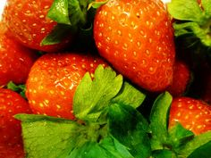 Strawberry Picking, Eating and Memories - News - Bubblews