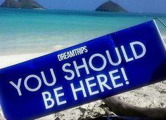 As Dreamtrips levam-no às melhores experiências nas suas férias! Aqui terá acesso a acomodações de 4 e 5 Estrelas, a preços de 2 e 3 estrelas!
